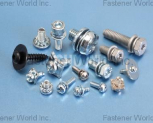 Sems Screws(CHU WU INDUSTRIAL CO., LTD. )