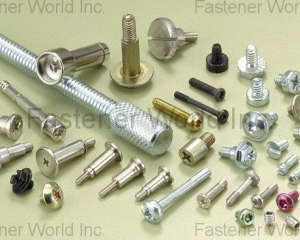 ELECTRONIC SCREWS & BOLTS(SCREWTECH INDUSTRY CO., LTD. )