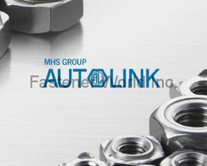 All Kinds Of Nuts(AUTOLINK INTERNATIONAL CO., LTD.)