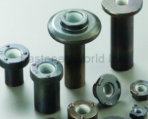 NYLOK COATED PARTS(DA YANG SPECIAL NUTS)