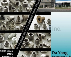 Automotive Nuts(DA YANG SPECIAL NUTS)