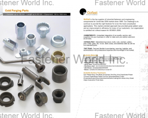 Cold Forging Parts(GOFAST CO., LTD. )