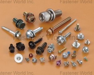 SEMS - Assembled with all kinds of Washers(ABS METAL INDUSTRY CORP. )