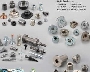 Weld Nuts, Flange Nuts, Lock Nuts, Nylon Insert Nuts, Stainless Steel Nuts, Special Nuts