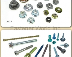 Hexagon Nuts(J. T. FASTENERS SUPPLY CO., LTD. )