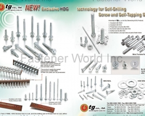 Hot-Dip Galvanizing Process For Nail, Washer, Spring Washer, Tapping Screw, Screw, Bolt And Nut, Hot-Dip Galvanized Self-Drilling Screw (Exclusive!)(TG CO., LTD. )