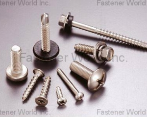 Stainless Steel Screw(DRA-GOON FASTENERS INC.)