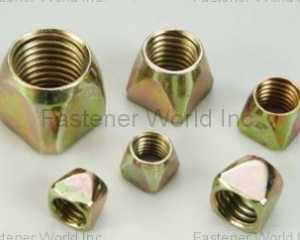 Square Conical Nuts(HSIEN SUN INDUSTRY CO., LTD. )